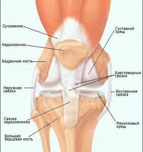 Болят суставы при беременности почему возникает боль в коленях и других суставах
