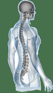 Сколиоз и остеохондроз разница