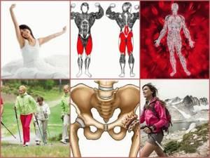 Можно ли заниматься скандинавской ходьбой при гонартрозе коленного сустава