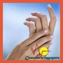 Почему сводит левую руку: толкование симптомов. Сводит кисть правой руки причины Почему сводит руку правую и болит